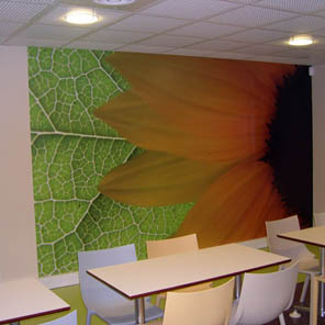 Pvc pro Walls for offices and shops